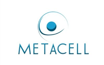 METACELL