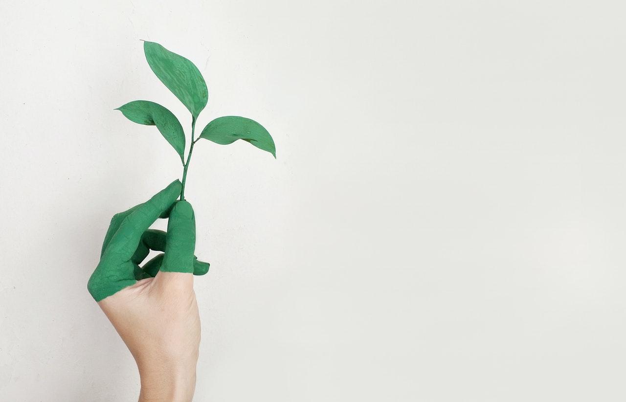 Fuchs Petrolub SE kiterjeszti a karbonsemlegesség lehetőségeit